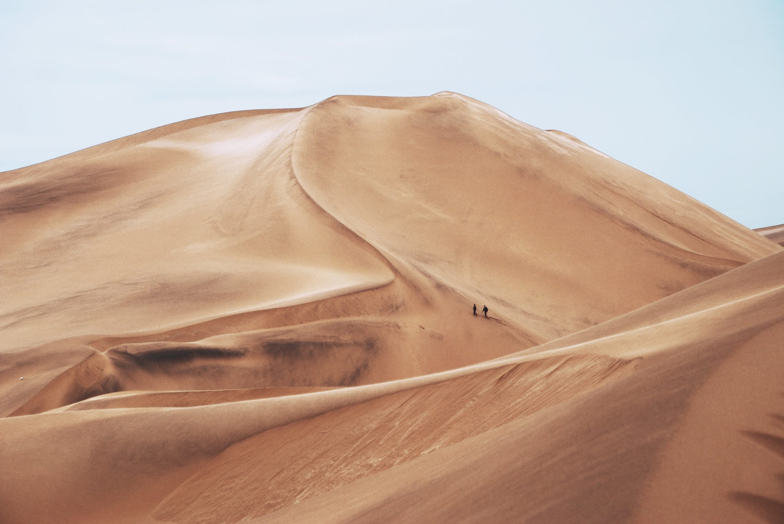 A holiday in the Dunes